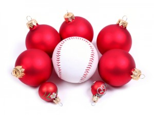 Slowpitch Baseball Bat Gift Guide